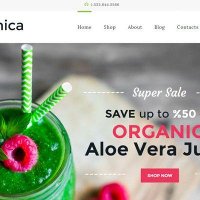 organica-wordpress-responsive-theme-slider1